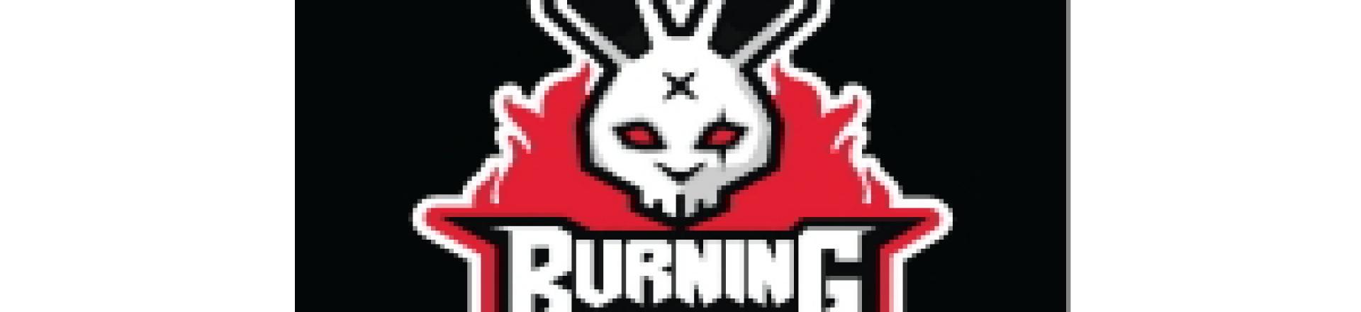 UFPR BURNING BUNNIES. Equipe de e-sports (esportes eletrônicos)
